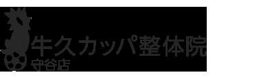 「牛久カッパ整体院 守谷店」 ロゴ